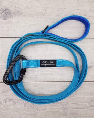 Blue Monday Urban Carabiner Lead