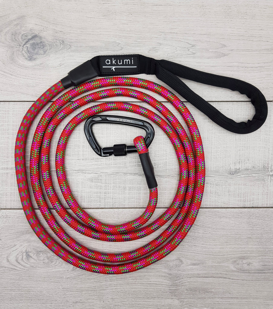 Toffee Apple Adventure Carabiner Rope Lead