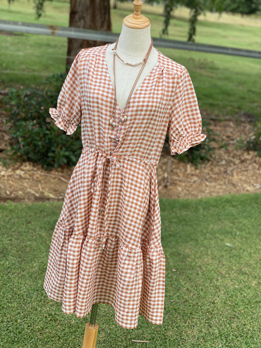 Betty checked dress