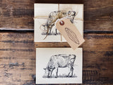 The Herd Stationary Pack