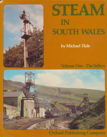 Steam in South Wales: Volume 1 - The Valleys