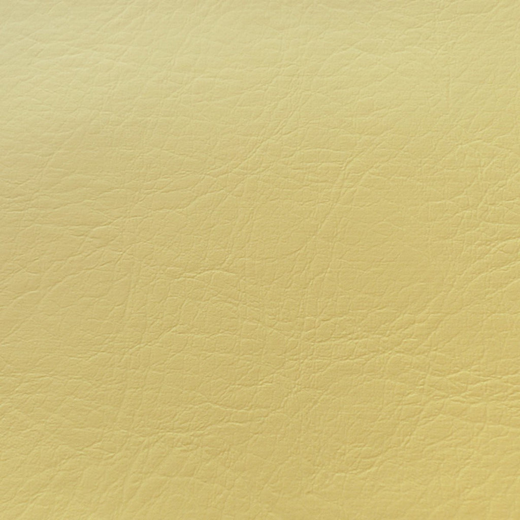 096 Canary Yellow - AGS-096 - Swatches