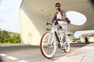 BULLS eBIKE+STURMVOGEL E EVO - Electric Cycling House