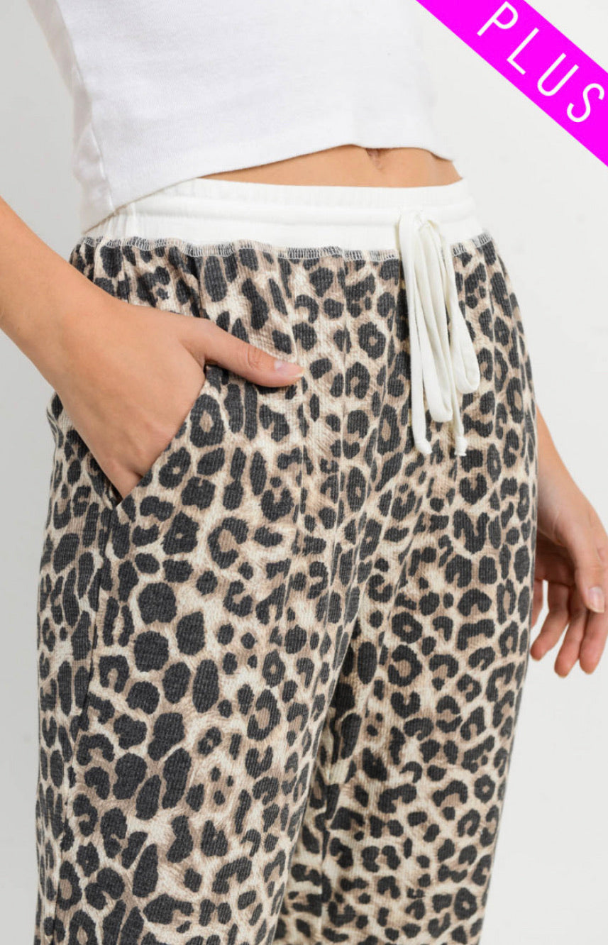 Leopard Joggers-Regular & Plus Size