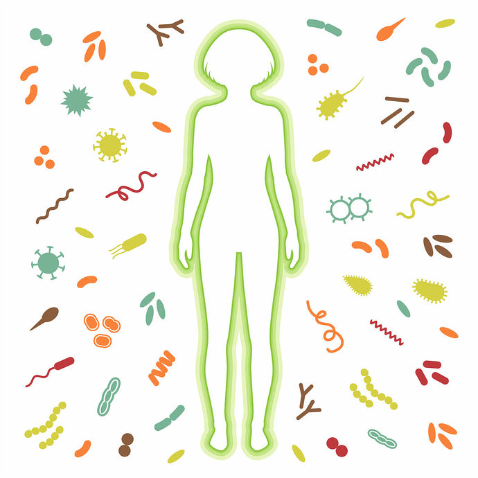 ODARA Skin Care Supports the Microbiome