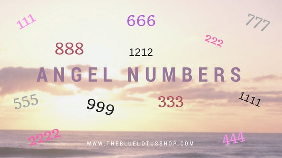 Angel Numbers – The Blue Lotus Shop