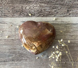 Petrified Wood Puffy Heart