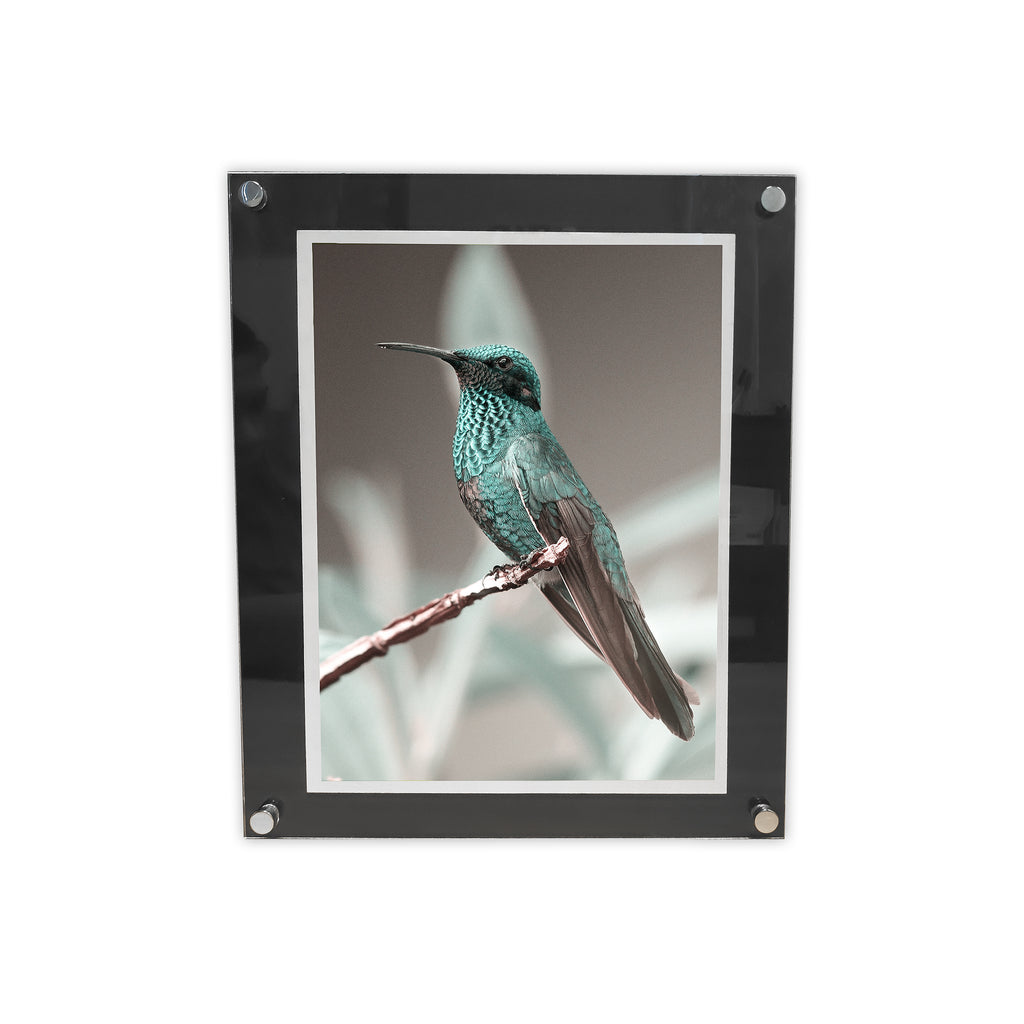 Floating Acrylic Picture Frame - Plastic Work Displays