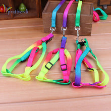 Dog/Cat - Adjustable Rainbow color Pet Leash in strong nylon with metal clip.