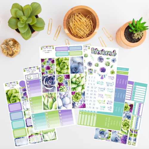 WK30 - Signature Succulents Weekly Planner Sticker Kit