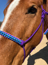 Jewel Nose Band Halters