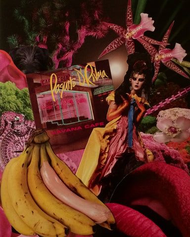 Collage featuring bananas in the bottom left corner as well as red lips, flowers, and a central high-fashion female figure.