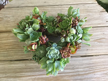 "Do It Yourself 9"" Succulent Heart Wreath Kit"