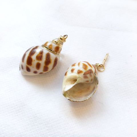 KEP Interchangeable Shell Earring