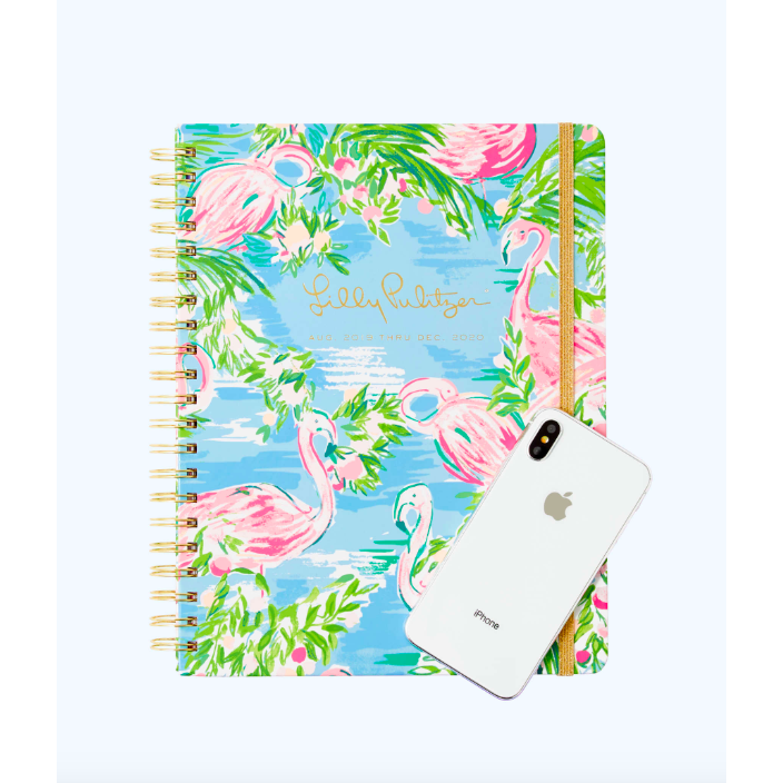 Load image into Gallery viewer, Lilly Pulitzer 2019-2020 Jumbo Agenda 17 Month Multi Floridita