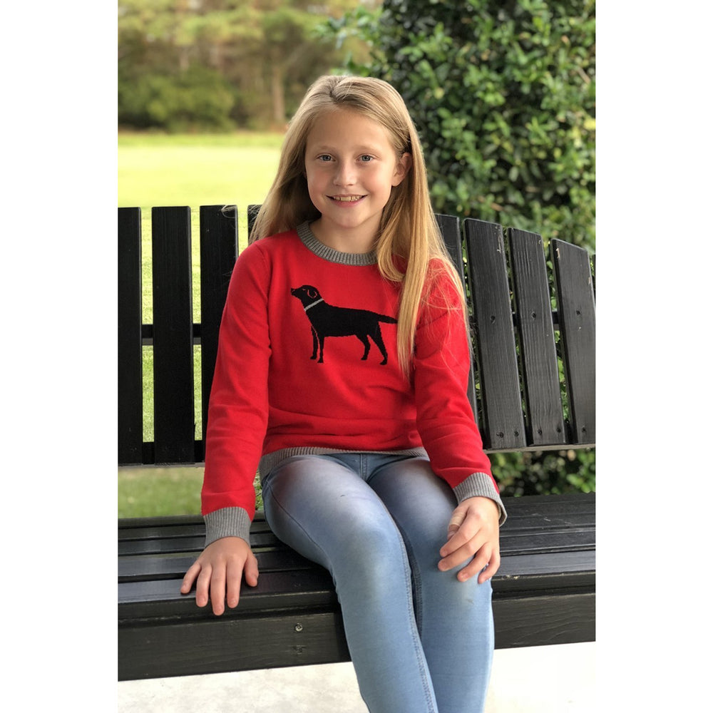 Haley And The Hound Kids Labrador Sweater Red