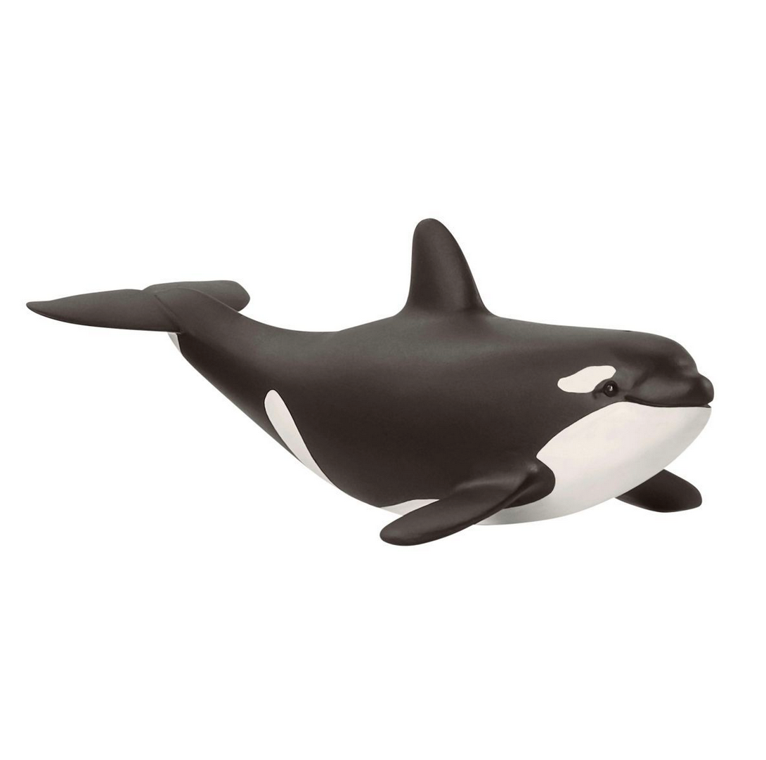 Baby Orca by Schleich