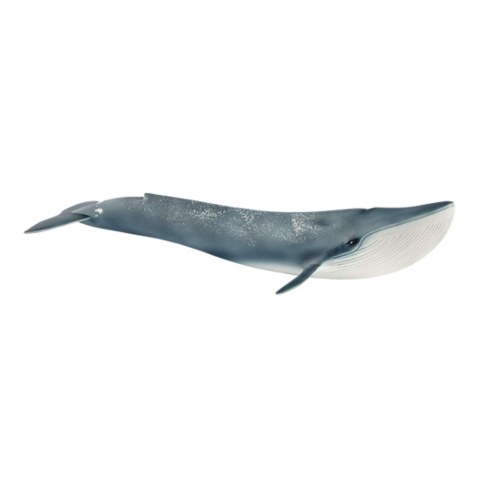 Blue Whale by Schleich