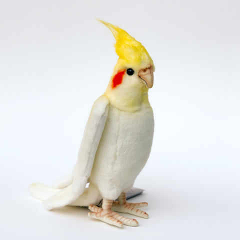 Cockatiel by Hansa