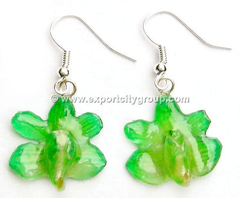 Aerides Odorata Orchid Jewelry Earring (Green)