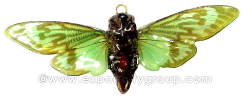 Real Butterfly Jewelry Pendant (BTF-002)