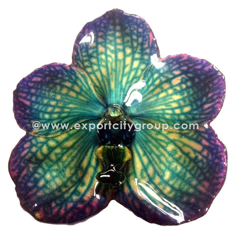 Vanda Orchid Jewelry Pendant (Navy/Purple)