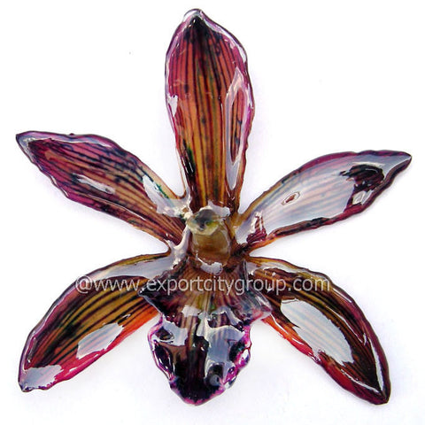Cymbidium (1) Orchid Jewelry Pendant (Dark Brown)