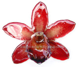 Cymbidium (2) Orchid Jewelry Pendant (Red)