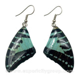Real Butterfly Wings Jewelry Earring - Graphium (Turquoise)