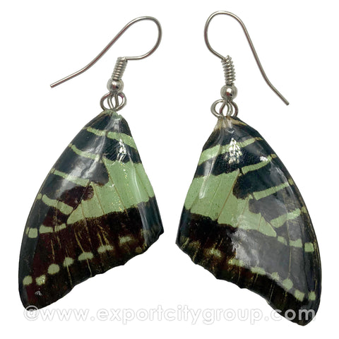 Real Butterfly Wings Jewelry Earring - Graphium (Light Green)