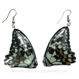 Real Butterfly Wings Jewelry Earring - Duo Butterfly Teal (Blue-green)