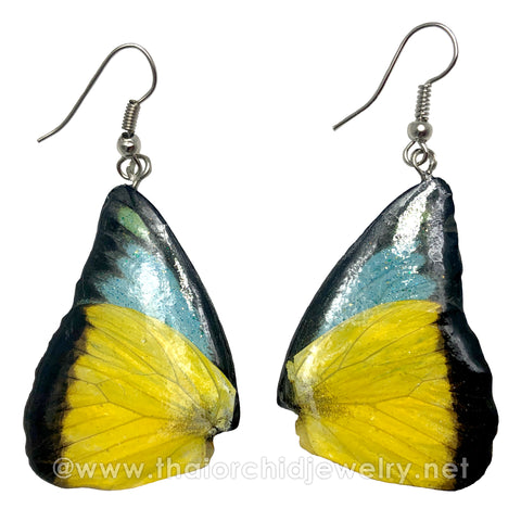 Real Butterfly Wings Jewelry Earring - Duo Butterfly (Yellow Blue)