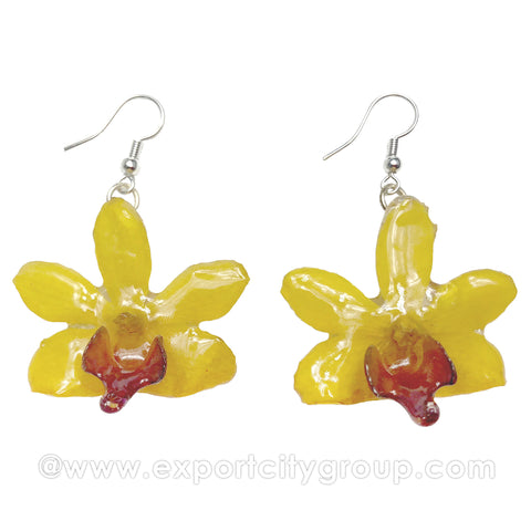 "Doritis MEDIUM ""Phalaenopsis"" Orchid Jewelry Earring (Yellow)"