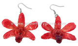 "Mini ""Dendrobium"" Orchid Earring (Red)"