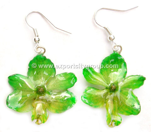 Rhynchorides (Bangkok Sunset) Orchid Jewelry Earring (Green)