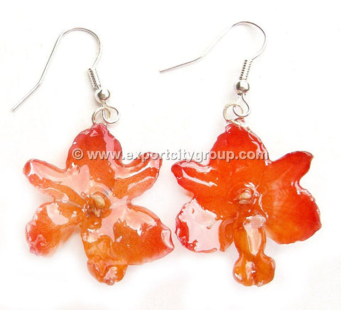 Rhynchorides (Bangkok Sunset) Orchid Jewelry Earring (Orange)