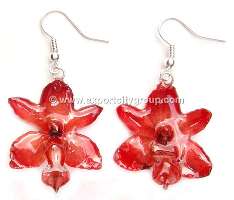 Rhynchorides (Bangkok Sunset) Orchid Jewelry Earring (Red)