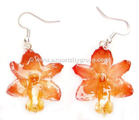 Rhynchocentrum Orchid Jewelry Earring (Yellow)