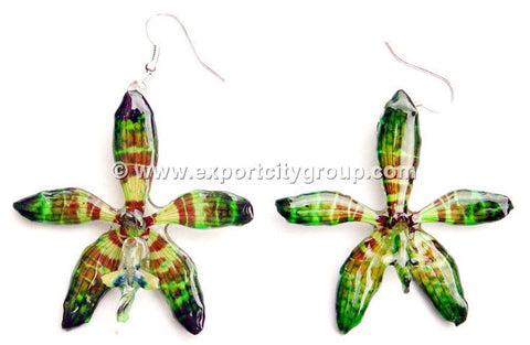 Staurochilus Fasciatus Bengal Tiger Orchid Jewelry Earring (Green)