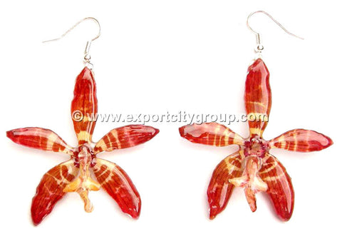 Staurochilus Fasciatus Bengal Tiger Orchid Jewelry Earring (Red)