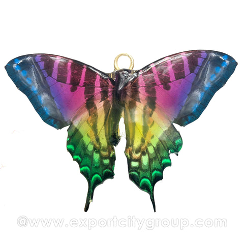 Real Butterfly Jewelry Pendant (BTF-009)