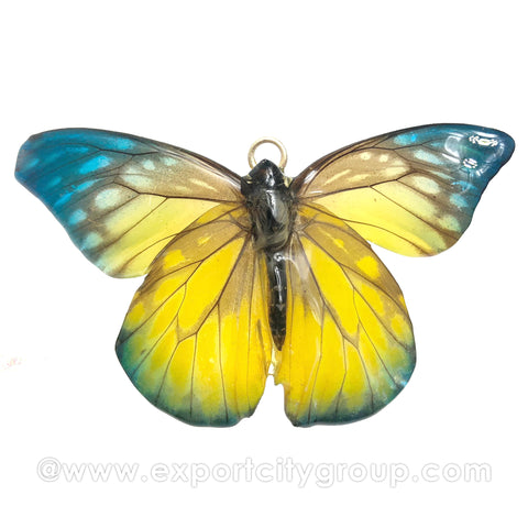 Real Butterfly Jewelry Pendant (BTF-012)