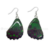 Real Butterfly Wings Jewelry Earring - WG02 Dyed Green