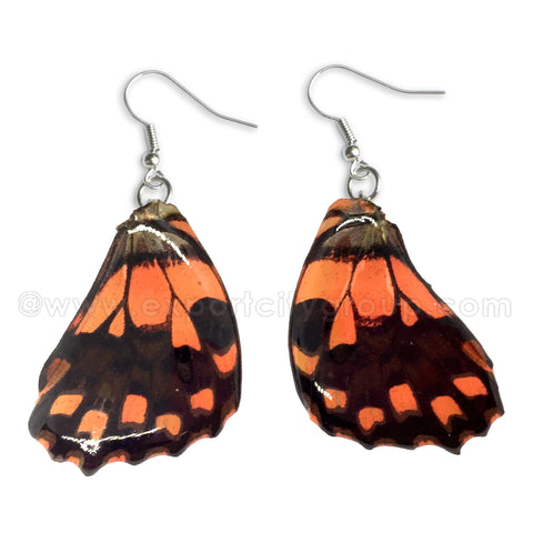 Real Butterfly Wings Jewelry Earring - WG02 Dyed Orange