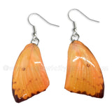 Real Butterfly Wings Jewelry Earring - WG05 Dyed Orange