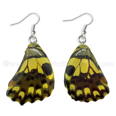 Real Butterfly Wings Jewelry Earring - WG02 Dyed Yellow