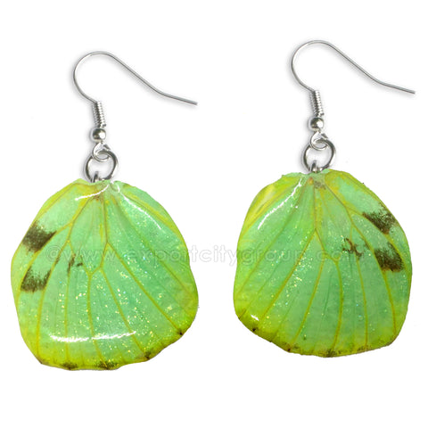 Real Butterfly Wings Jewelry Earring - WG04 Dyed Green