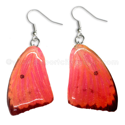 Real Butterfly Wings Jewelry Earring - WG05 Dyed Pink