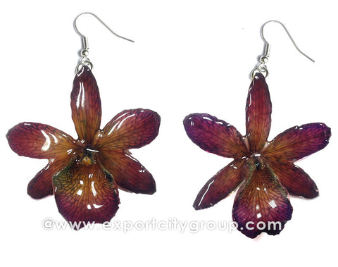 Cattleya Mini Orchid Jewelry Earring (Purple / Brown)