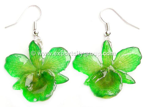 "Chrysotoxum ""Dendrobium"" Orchid Jewelry Earring (Green)"